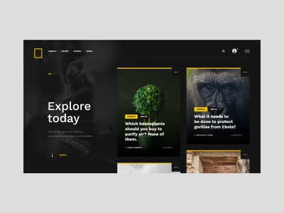 #65 Shots for Practice photography news tv journal travel animals web concept redesign national geographic photo nature flat minimalism homepage black website ux ui