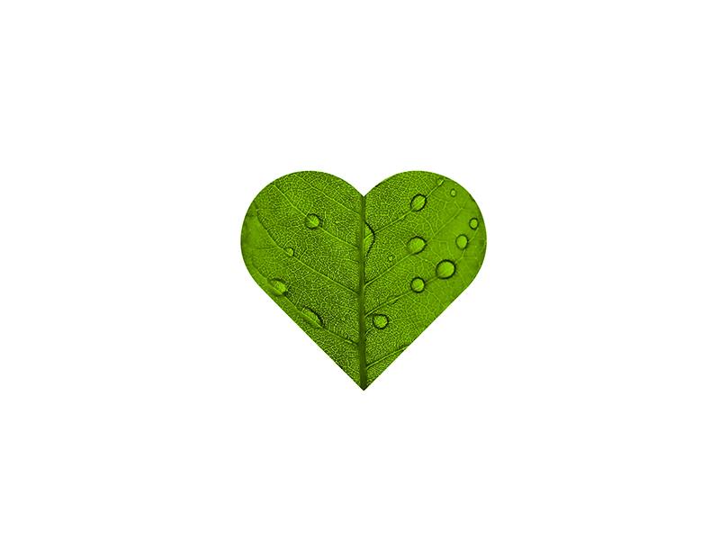 Leaf InstaHeart icon love instaheart taptap doubletap heart instagram green leaf