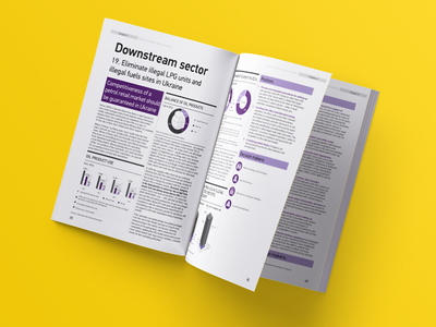 Annual Report - The American Chamber of Commerce slide print presentation minimal infographic document brochure report annual a4