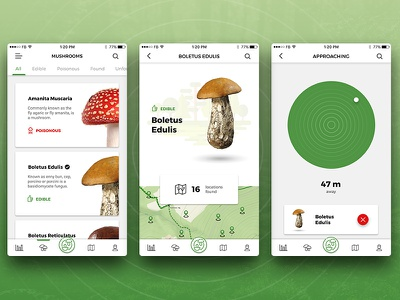 CAP&STALK recognize sketch search find compass watch bolete mushroom ios app