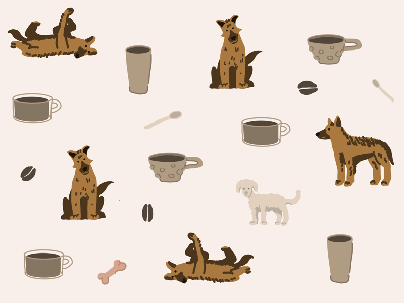 Poodle lost his bone shot animals dog animation designer flat cute logo pattern graphic design graphic design illustration illustrator