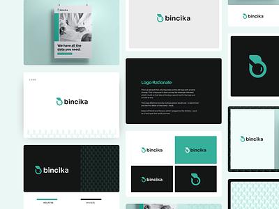 Branding for Bincika brandidentity branding and identity datalogo logos logotype data branding data branding concept branding design brand minimal design logo design branding brand identity logo