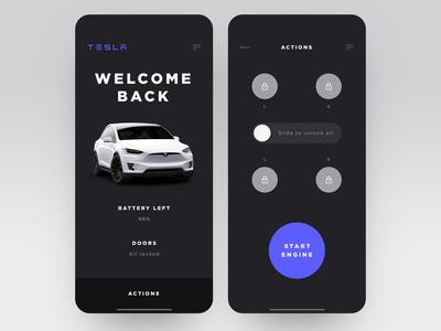 Tesla Car Control - App Interface