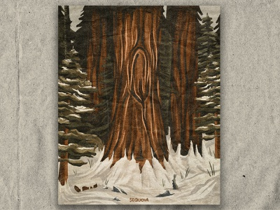 Q for Sequoia trees nature national park texture retro vintage illustration