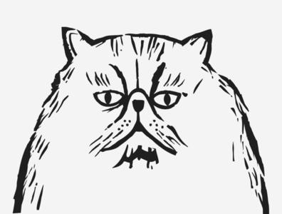 Cute Dora cute pet vector cats cat animal illustration japanese japan