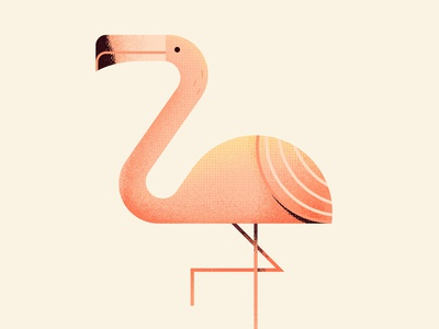 Come on, let's flaminGO - Day #172