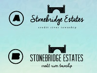 Stonebridge dribbble