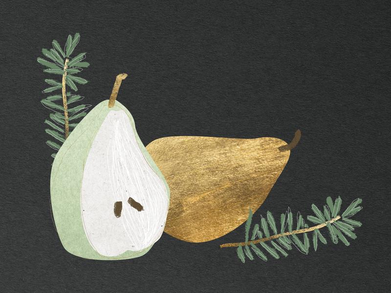 Winter Spot Illo - Pears holiday christmas fall thanksgiving winter brush abstract texture design vector illustrator illustration
