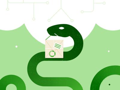 Anaconda in Green minimalist programming coding green package cloud computer snake anaconda flat illustration