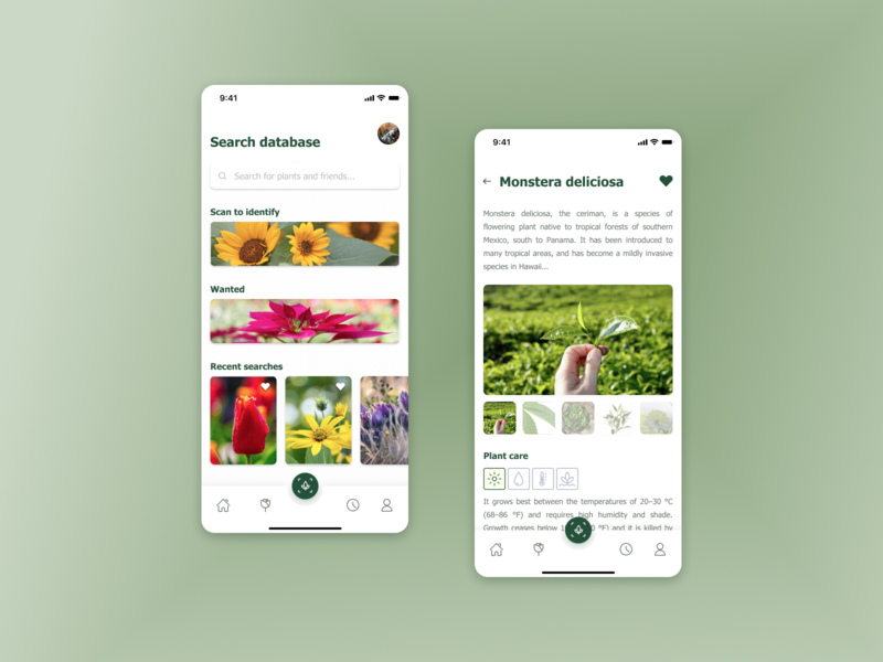 R+R : Nature Explorer ux ui product mobile app