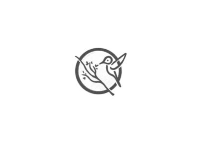 The Humming Bird icon simple illustration design typography logo design logo inspiration branding bird logo humming bird hummingbird