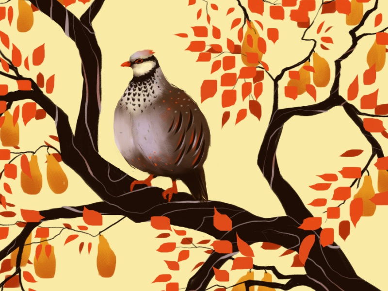A Partridge In Pear Tree Smaller