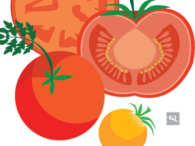 Tomatoes vector fruit mushrooms flowers vegetables farmers market flat color food qcassetti