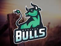 Montana Bulls - Final