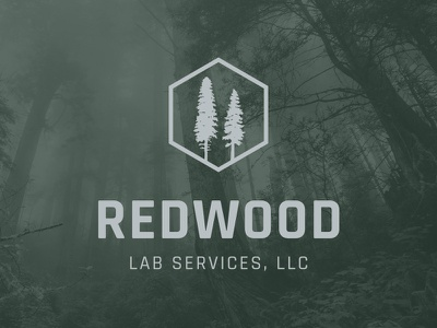 Redwood Labs Logo trees lab services earthy redwood branding logo design logo