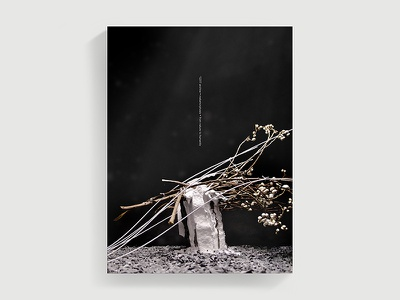 Zen Poster installation art illustration poster cover cover-design high-school-project