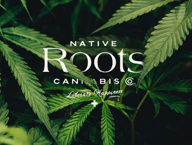 Native Roots —Unused Direction Pt. 2 wellness health first aid liberate happiness native roots flower weed company weed branding cannabis branding roots native marjuana weed cannabis vector logotype branding logo lettering typography