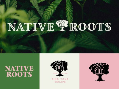 Native Roots Cannabis Company Branding Concept —Unused leaves high escape dispensary branding dispensary logo dispensary cannabis branding cannabis marijuana weed native roots native treehouse vector logotype branding hand lettering illustration logo typography