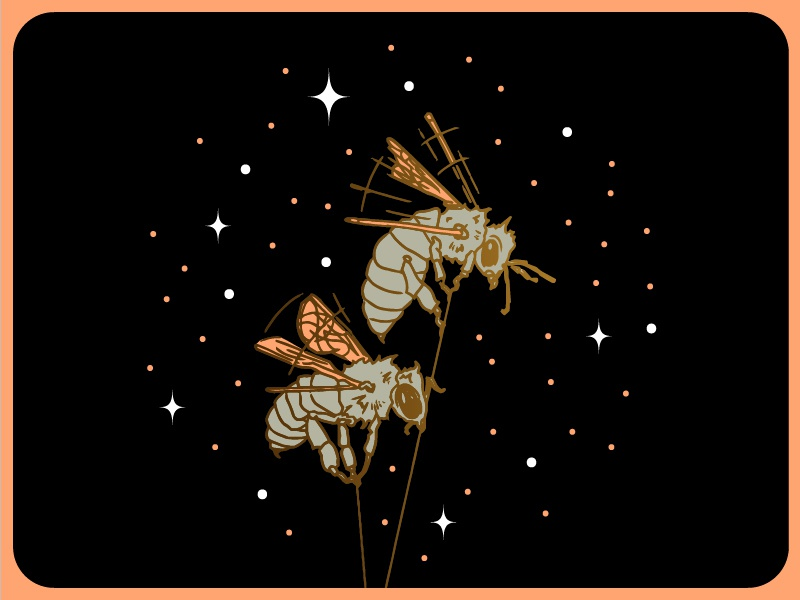 Space Bees stars flight outer space gradient vector hand drawn illustration space bee