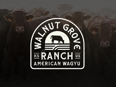 Walnut Grove Ranch Wagyu Beef Branding bespoke folk americana badge farm beef wagyu identity illustration design texture clean branding logo
