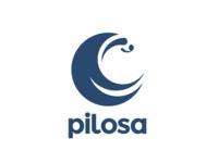 Pilogo