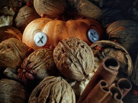 Halloween | Trick or Treat?