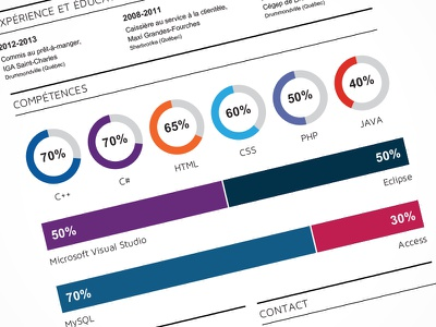 IT Resume type design layout skills graph resume