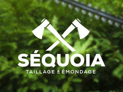 Séquoia 1 logo design logo branding identity design axe axes typo typography wood lumberjack landscaping