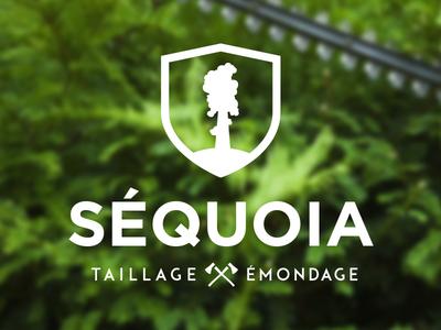 Séquoia 2 logo design logo branding identity design axe axes typo typography wood lumberjack landscaping