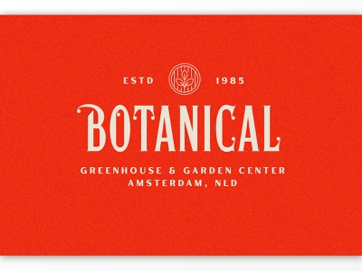 Botanical Logo poster serif texture branding packaging logotype logo lettering typography