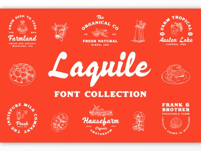 Laquile Font Collection illustration display lettering branding packaging label badge logotype logo typography
