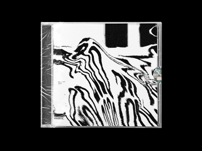 PAD - 009 thing a day weird typography type swiss print packaging minimal grayscale graphic design display contemporary clean cd cover cd bold black and white album cover album art