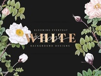 White Rose & Gold Typography Vectors