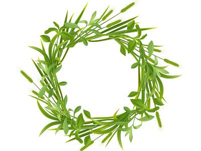 Grass leaves round frame frame botany grass flora plant realistic vector illustration