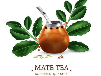 Green mate tea herbal beverage leaves tea mate realistic vector illustration