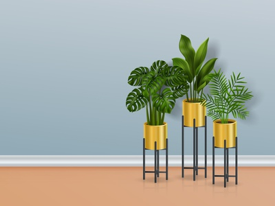 House plants in pots tropical interior flowerpot exotic realistic vector illustration