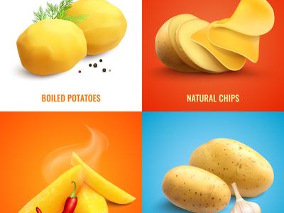 Vegan realistic design concept
