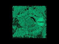 ÄGAIN - HYPNOTHERAPHY 01