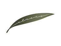 Alceño — Olive Oil