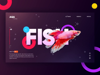 Landing Page UI ae aep animation web design design aftereffects xd ui concept home page landing page figtingfish goldfish aquarium online shop fish
