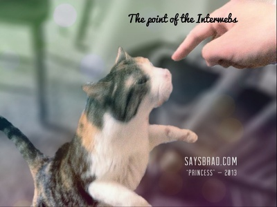 Internet is for the cats cat ipad type madewithover experimental ios apps