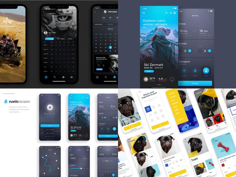 My 2018 best year in review top4shots travel app pug dog minimal calendar ecommerce uiux ui design ios app iphone ui mobile app mobile design 2018 trends 2018