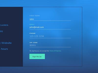 Form Field interaction design vr branding ux ui web design form field
