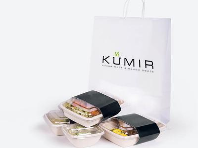 Design of the site for Kumir web design site design design