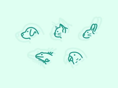 Pet Icons icons set bird cat dog pet illustrations icons ui color web design web design mighty