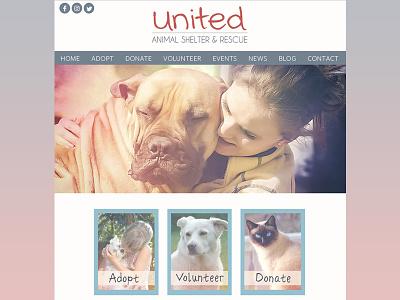 United. Animal Shelter & Rescue web mockup layout layout design website design web design