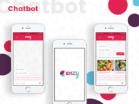 Enzy Chatbot
