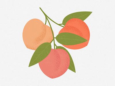 Peaches pattern print design flat illustrator illustration tree plant peach fruit