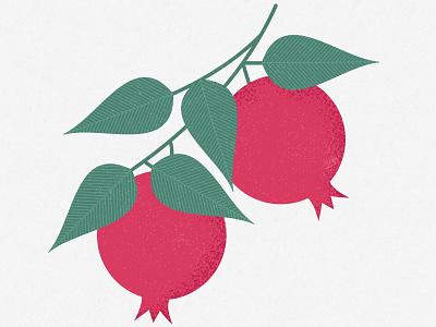 Pomegranate vector fruit graphic graphics illustrator print design illustration