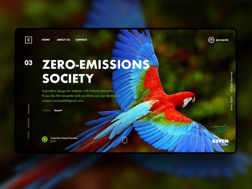 Costa Rica Nature design ui branding